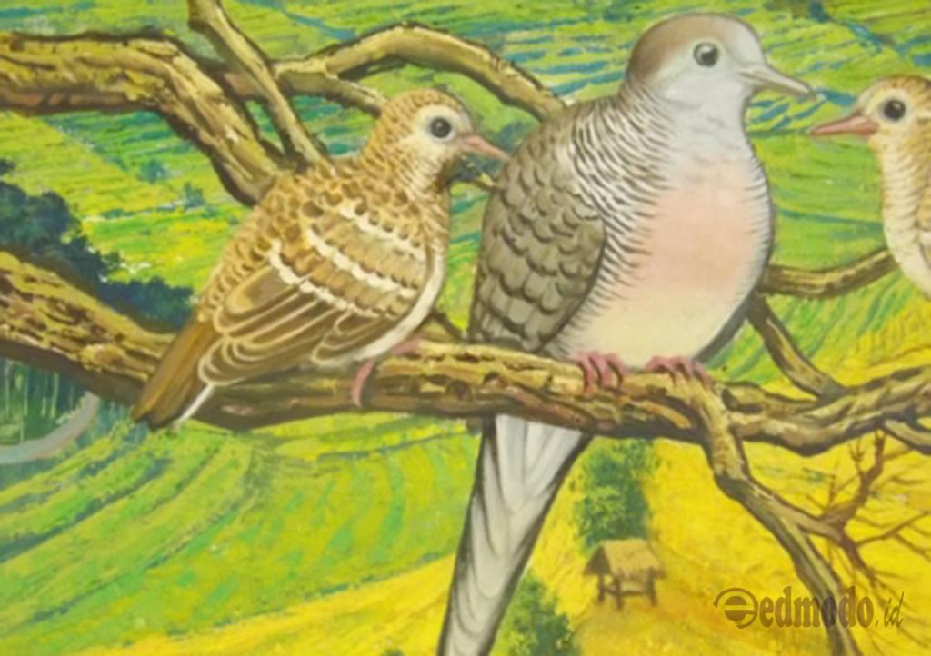 25 Arti Mimpi Tentang Burung - Menurut Primbon Jawa