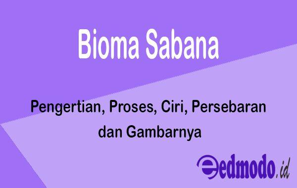 Bioma Sabana - Pengertian, Proses, Ciri, Persebaran dan Gambarnya