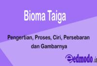 Bioma Taiga - Pengertian, Proses, Ciri, Persebaran dan Gambarnya