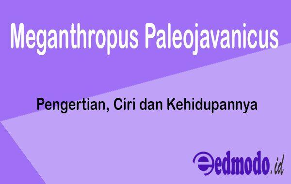 Meganthropus Paleojavanicus - Pengertian, Ciri dan Kehidupannya