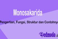 Monosakarida - Pengertian, Fungsi, Struktur dan Contohnya