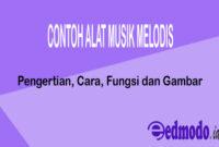 Contoh Alat Musik Melodis