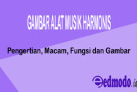 Gambar Alat Musik Harmonis