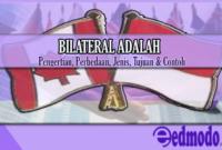 Bilateral Adalah