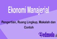 Ekonomi Manajerial - Pengertian, Ruang Lingkup, Makalah dan Contoh