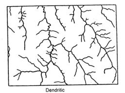 Dendritik